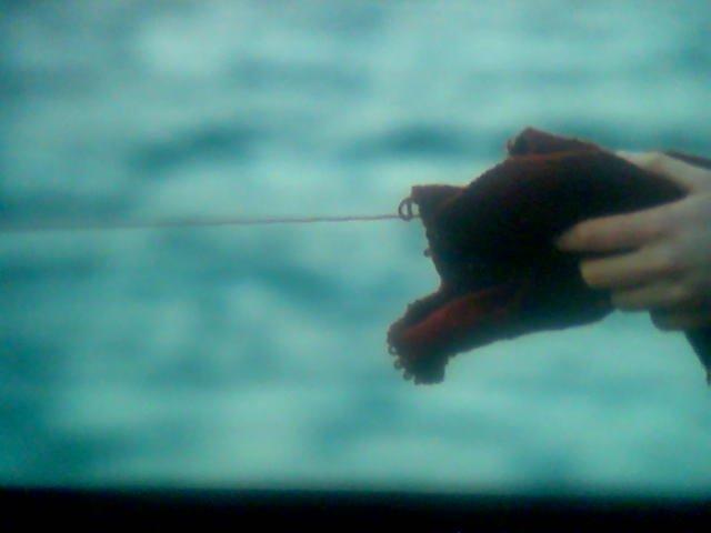 Angelopoulos' røde tråd. Lenke til en side om filmen Den gråtende engen